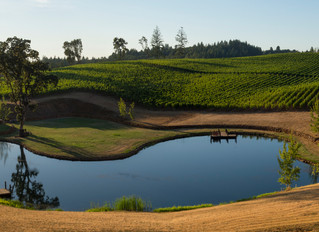 Wines of Oregon and Washington are Poised for Greatness on The World Stage.