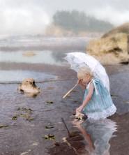 Little Beachcomber