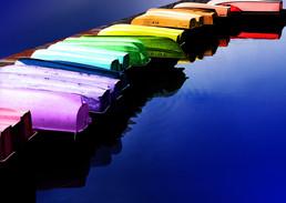 Rainbow Fleet