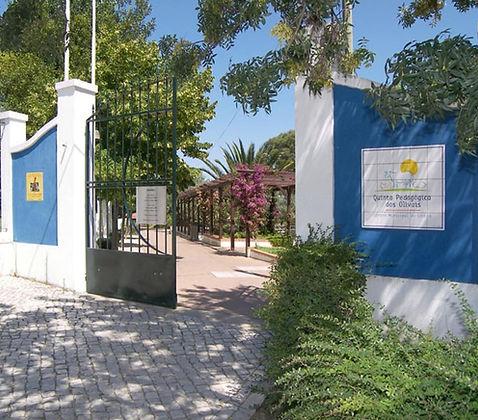 Quinta-Pedagógica-dos-Olivais.jpg
