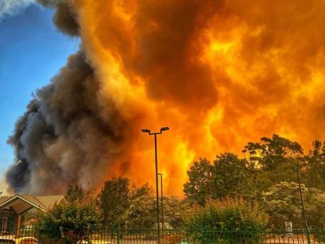 Sunday Sanity Break, 5 January 2020 - Australia's Bushfire catastrophe