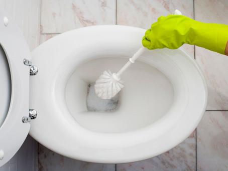 Recette de pastilles WC naturel