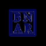 Belize National Association of Real Estate (BNAR)