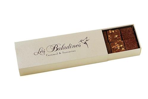 Cacao du Bélize