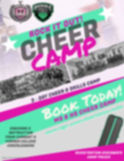 Rock It Out MS HS Cheer Camp Flyer - Mad