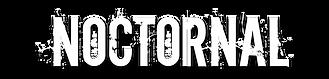 NocTORnal Logo.PNG