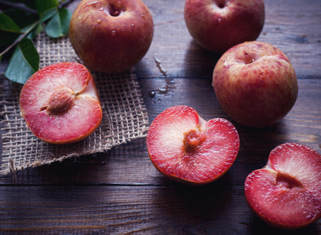 Cornmeal and Plum - Tuesday August 18 10am