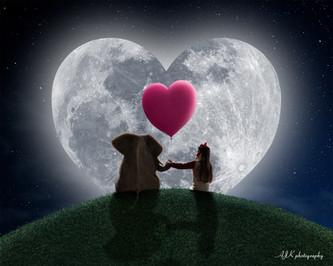 elephant on hill pink heart moon Kaitlin