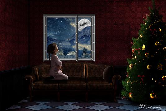 Christmas window 9 Kaitlin fb.jpg
