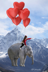Elephant with heart balloons Juliette cr