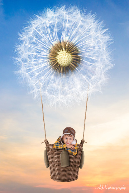 dandelion hot air balloon 3 facebook.jpg