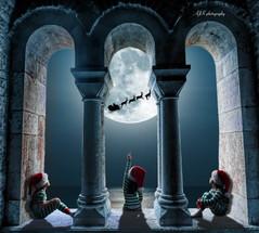 Christmas window 18 triplets fb.jpg