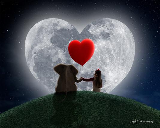 elephant on hill red heart moon Kaitlin