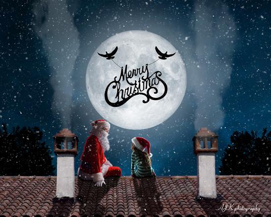 Santa on roof doves Kaitlin fb.jpg