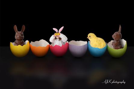 Easter eggs black backdrop sample fb.jpg