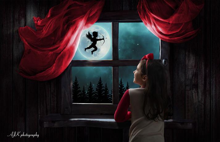 Valentine's Day window 13 Arielle fb.jpg