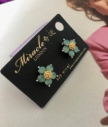 20591840900/395 Silver Earrings