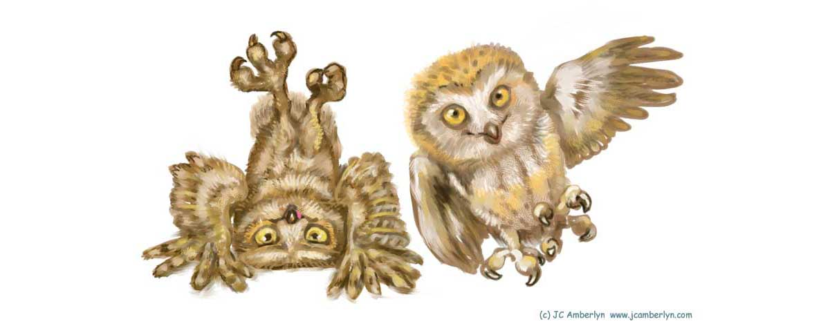 Nutty Owls