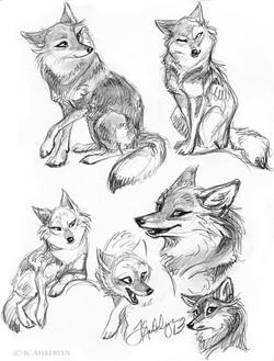 Furr Coyote