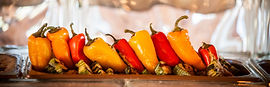 The Yellow Carrot Wedding Buffet Durango