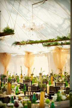 A&A The Yellow Carrot Weddings and Event
