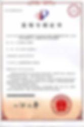 中国特許2006.jpg