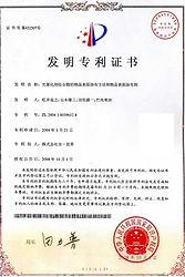 中国特許2008.jpg