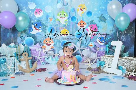 Holloman Smash cake photographer with baby shark theme