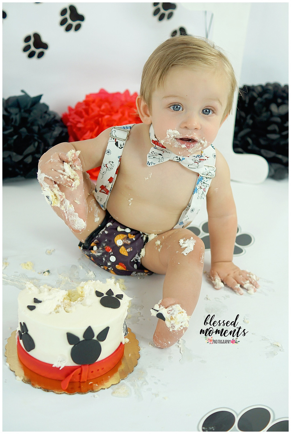 1 year old boy smashing his foot into his dalmatian smash cake
