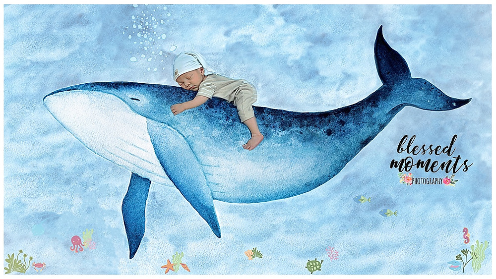 Photo of newborn baby riding on the back of a whale