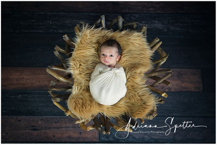 Las Cruces Newborn Photos