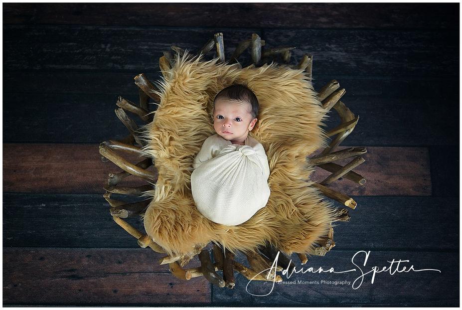 Las Cruces Newborn Photos