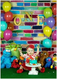 Sesame Street Smash Cake Photos