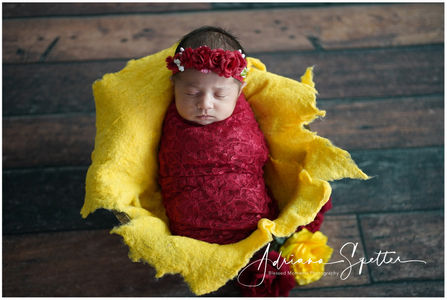 Tularosa Newborn Photos