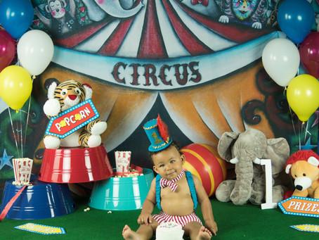 Smash Cake - Circus -Wade