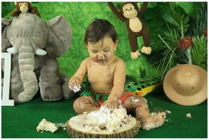 Safari Smash Cake Photography