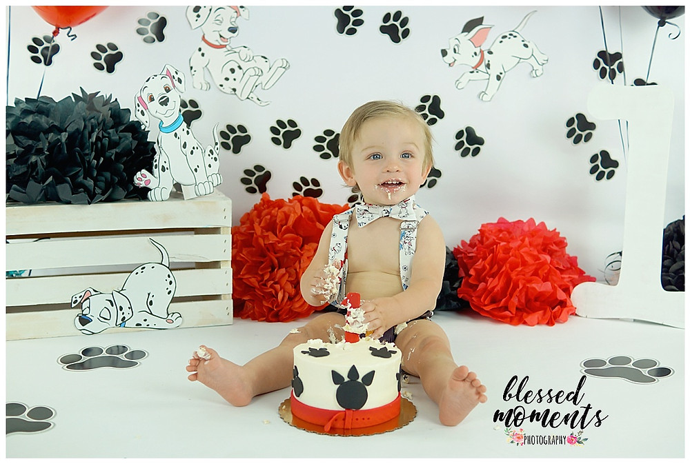 Dalmatian smash cake photo for 1 year old boy