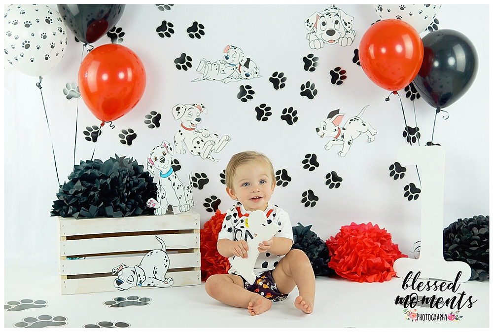Dalmatian themed 1 year old photo session