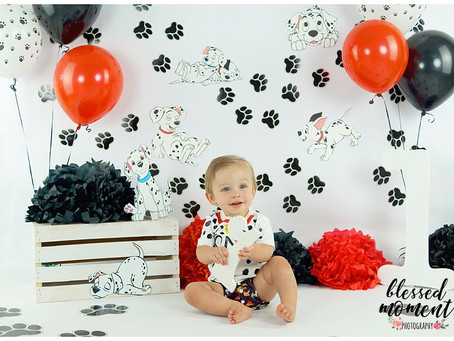 Dalmatian Smash cake session