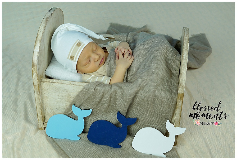 Newborn photo of little boy asleep in a bed dreaming of whales