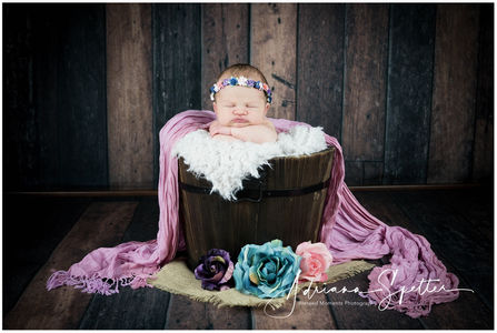 Holloman Newborn Photos