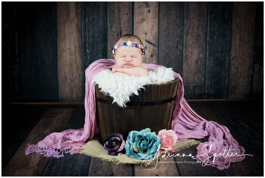 Holloman Newborn Photos