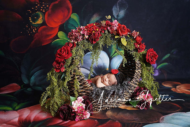 Tularosa newborn photographer with photo of baby girl in a floral basket with floral backdrop