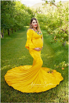 Sunflower Maternity Gown