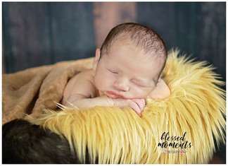 Cloudcroft Newborn Photos