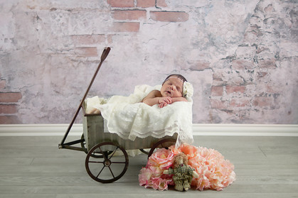 Alamogordo Newborn Studio Photographer