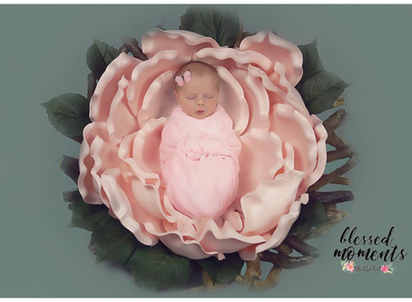 Newborn photo session for Kodence