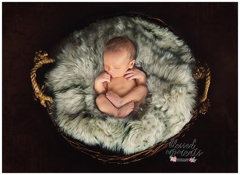 Cloudcroft Newborn Photographer