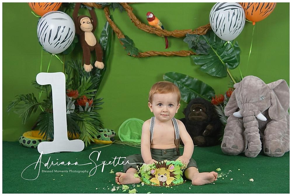 Little boy in Safari Smash cake photo
