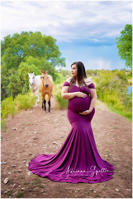 Berry Maternity Gown